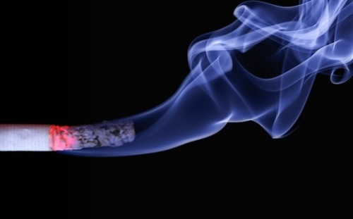 """One Swedish MEP Carl Schlyter, called the tobacco vote a """"shameful day for the European Parliament."""" (Pixabay)"""